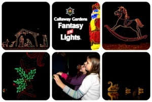 Callaway Gardens Fantasy in Lights 2011